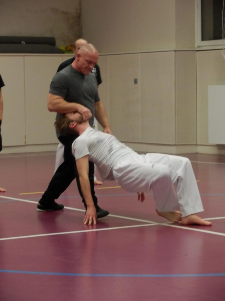 Cours de Taekwondo - Adultes